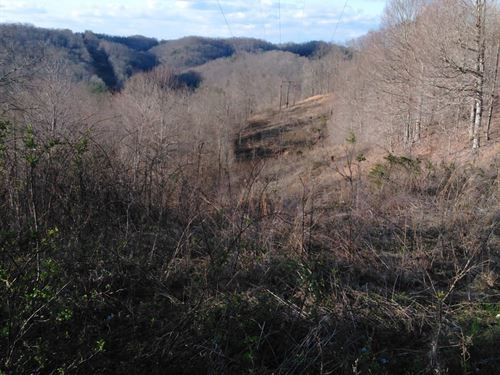 55 Acres Mountain Recreational : Beattyville : Lee County : Kentucky