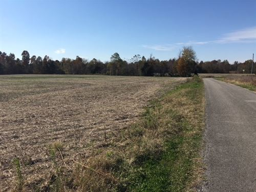 60 Acre Recreational-Hunting Land : Clarkson : Grayson County : Kentucky