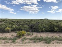 577.18 Acres Saguache County : Alamosa : Alamosa County : Colorado