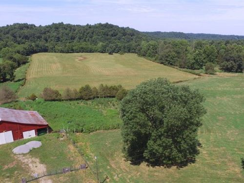 Barn, Creek, Wildlife, Farm : Edmonton : Metcalfe County : Kentucky