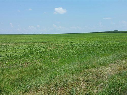 76.53 Acres Farmland West Simpson : Franklin : Simpson County : Kentucky