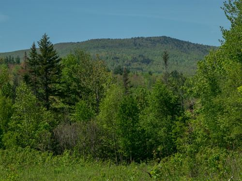 Maine Land For Sale in Avon : Avon : Franklin County : Maine