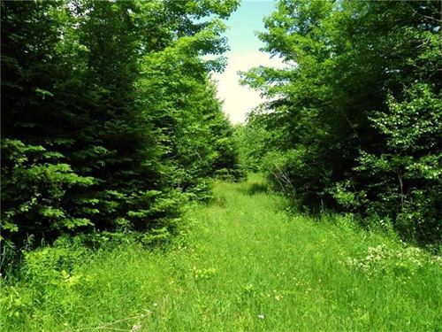 Maine Land For Sale in Benedicata : Benedicta : Aroostook County : Maine