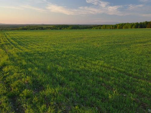 Maine Farm Land in Cyr Plantation : Cyrs : Aroostook County : Maine