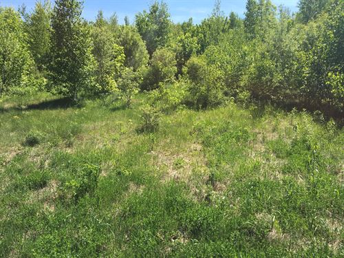 Maine Land For Sale in Lincoln : Lincoln : Penobscot County : Maine