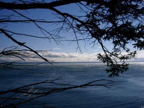 Maine Land For Sale in Lubec : Lubec : Washington County : Maine