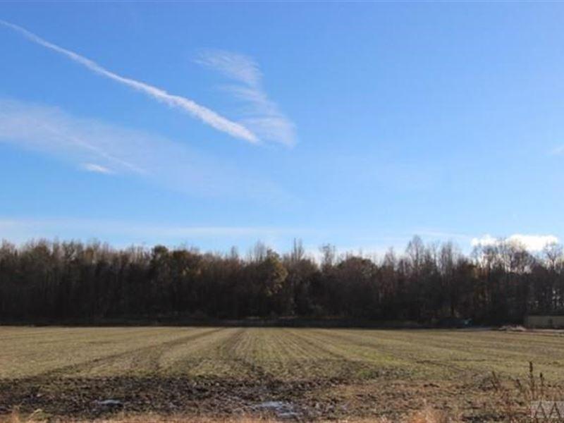 Large Building Lot, Farm Heavily : Elizabeth City : Pasquotank County : North Carolina
