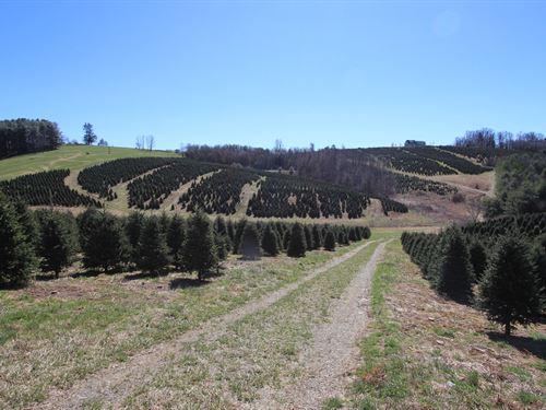 Blue Ridge Mountain Farm : Glade Valley : Alleghany County : North Carolina
