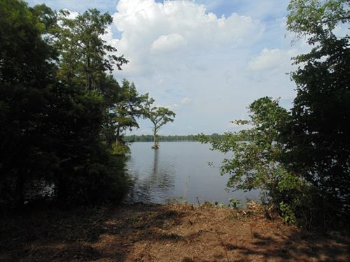 Riverfront Acreage, Harrellsville : Harrellsville : Hertford County : North Carolina