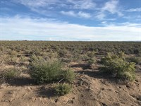 2,155 Acres Alamosa County : Alamosa : Alamosa County : Colorado