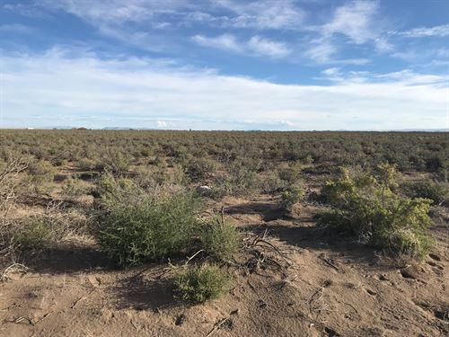 2,155 Acres Alamosa County : Alamosa : Colorado