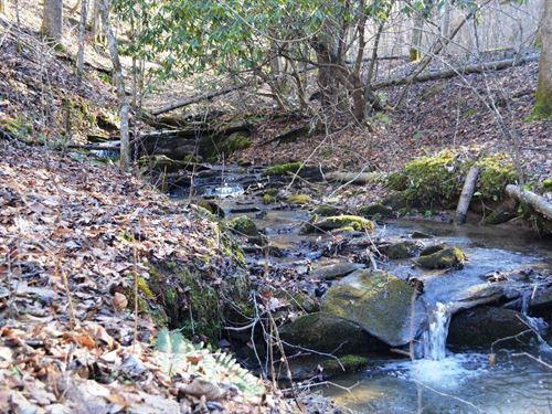 Mountain Land New River, Sparta : Sparta : Alleghany County : North Carolina