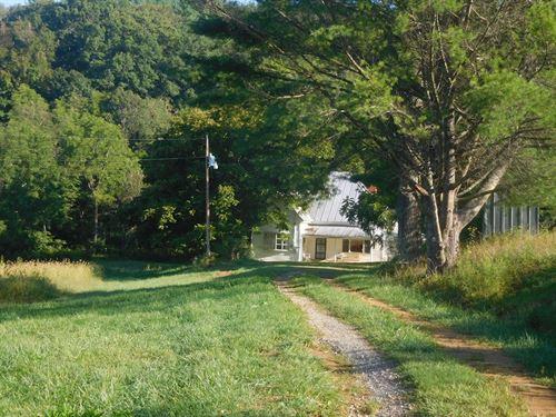 50 Acre Farm in Alleghany County : Sparta : Alleghany County : North Carolina