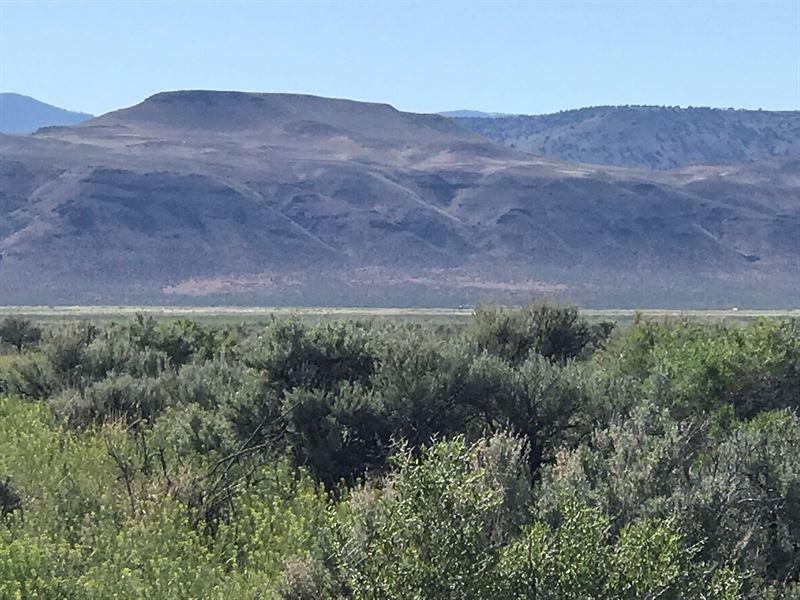 Desert Land Gerlach, Washoe, NV : Gerlach : Washoe County : Nevada