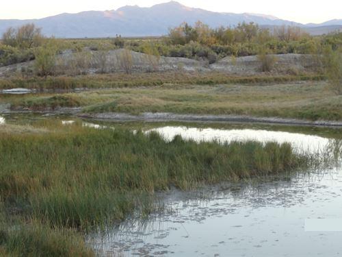 Nevada Land Surface Water, Mountain : Golconda : Humboldt County : Nevada