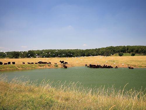 Land For Sale in Northeast Oklahoma : Afton : Ottawa County : Oklahoma
