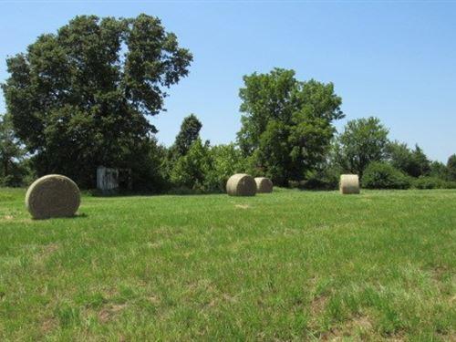 135 Acres For Sale in Antlers, OK : Antlers : Pushmataha County : Oklahoma