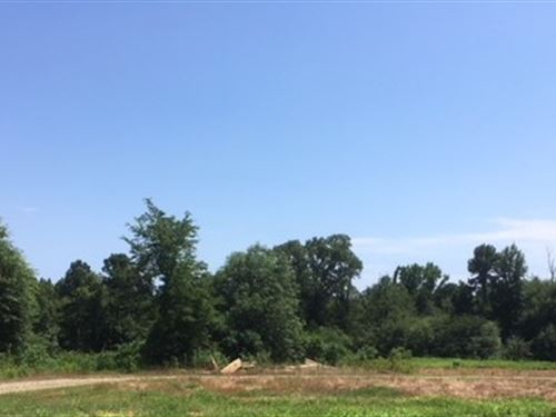 Wooded Land in Broken Bow Oklahoma : Broken Bow : McCurtain County : Oklahoma
