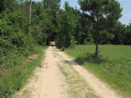 Country Home 10 Acres Haworth, Ok : Haworth : McCurtain County : Oklahoma
