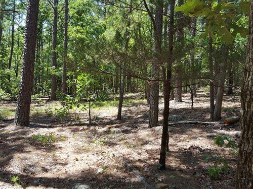Kiamichi Wilderness Hunting Land : Moyers : Pushmataha County : Oklahoma
