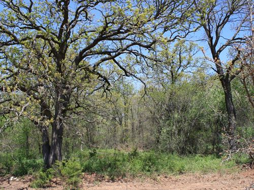 Central Oklahoma Wooded/Hunting : Perkins : Lincoln County : Oklahoma
