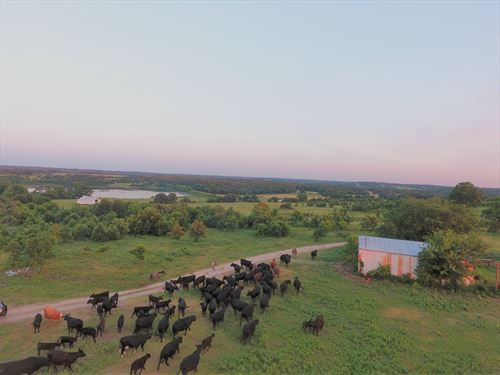400 Acre Cattle Ranch Hunting Land : Stratford : Garvin County : Oklahoma
