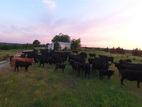 Land For Sale In Stratford Ok : Stratford : Garvin County : Oklahoma