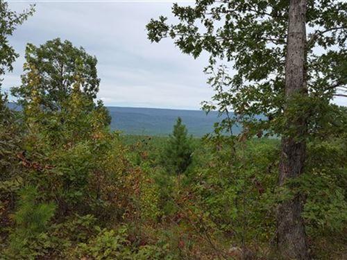 Hunting & Timber Farm Land : Talihina : Le Flore County : Oklahoma