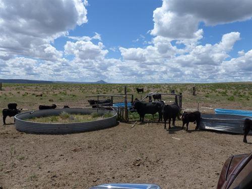 Burns, 640 Acres Cattle Pasture : Burns : Harney County : Oregon