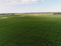 160 Acres in Marshall County SD : Amherst : Marshall County : South Dakota