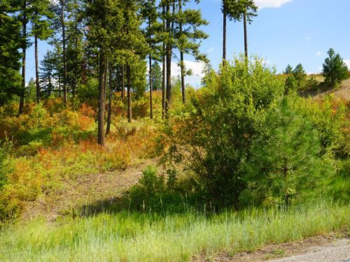 10 Acre View Property Mead, WA : Mead : Spokane County : Washington