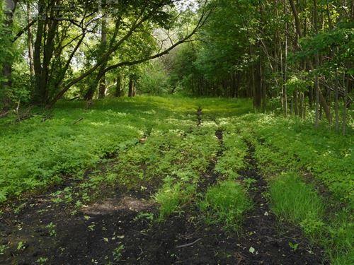 Premier Hunting Recreational : Belgium : Ozaukee County : Wisconsin
