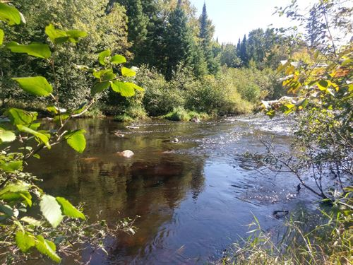 Hunting Fishing 150 Acres Chippewa : Glidden : Ashland County : Wisconsin