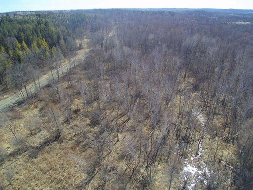 Hilltop Home Site Kettle Moraine : Kewaskum : Washington County : Wisconsin