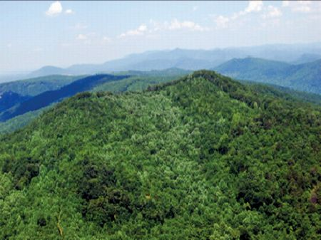 Mountain Investment Bank-owned : Union Mills : Rutherford County : North Carolina