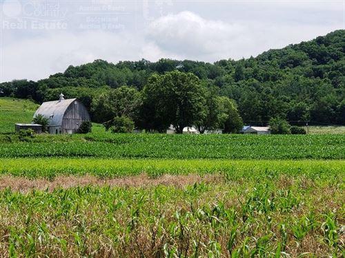 Riverfront Hobby Farm Richland : Richland Center : Richland County : Wisconsin