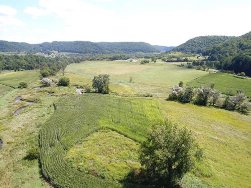 145 Acre Organic Farm, Trout : Viroqua : Vernon County : Wisconsin