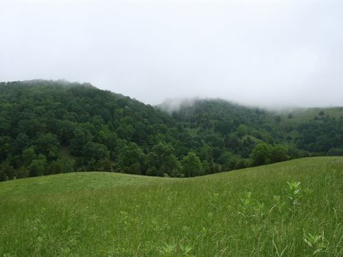 222 Acres Private Land, Public Road : Head Waters : Highland County : Virginia