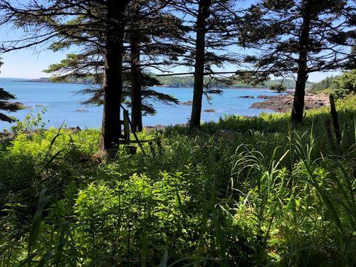 Coastal Land Lot, Trescott, Maine : Trescott Township : Washington County : Maine