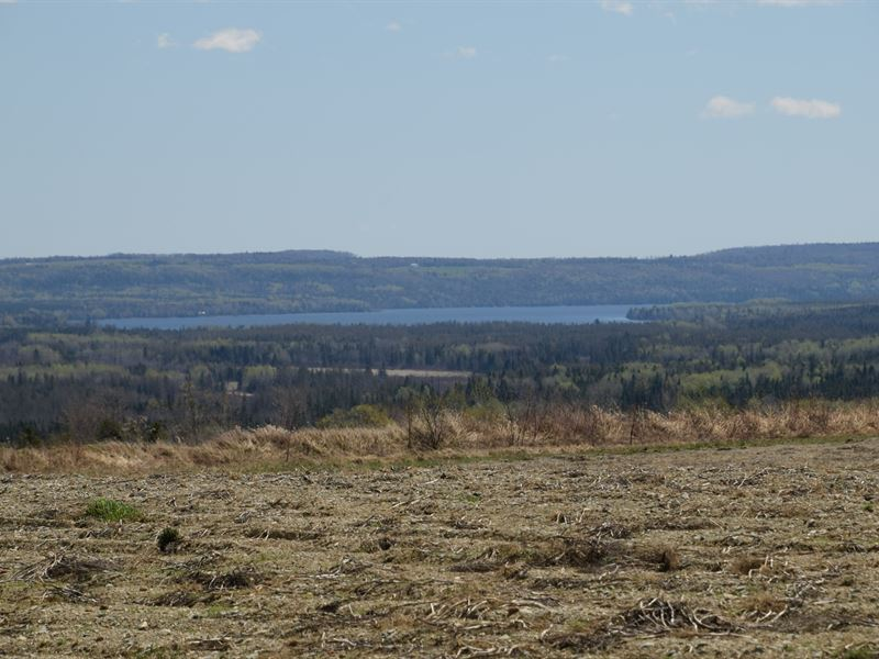 Maine Farmland in Cross Lake Twp : Cross Lake Twp : Aroostook County : Maine