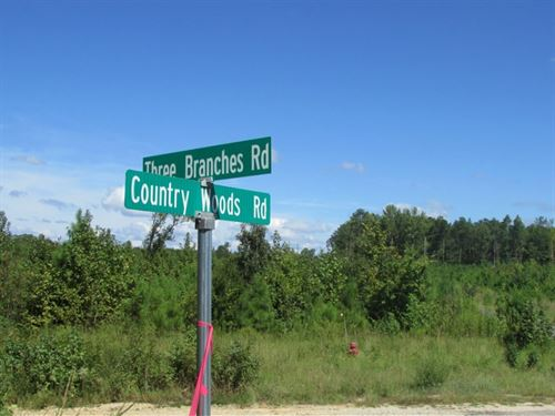 Three Branches Road Tracts A&B : Lugoff : Kershaw County : South Carolina