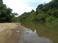 Flint River Big Buck Tract : Reynolds : Taylor County : Georgia