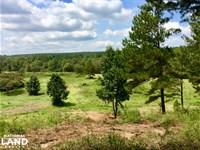Jefferson County River Front Huntin : Dora : Jefferson County : Alabama
