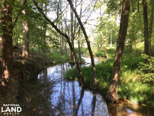 Highway 11 Hardwood Hunting Land : Mansfield : Jasper County : Georgia