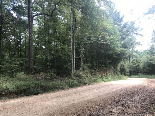 Weekend Getaway Or Home Site : Wesson : Copiah County : Mississippi