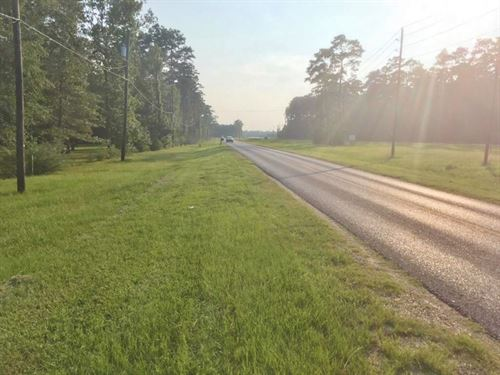 Large Lot For Sale Near Tickfaw Riv : Springfield : Livingston Parish : Louisiana