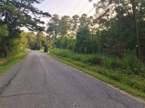 Lot For Sale Near Marina, Springfie : Springfield : Livingston Parish : Louisiana