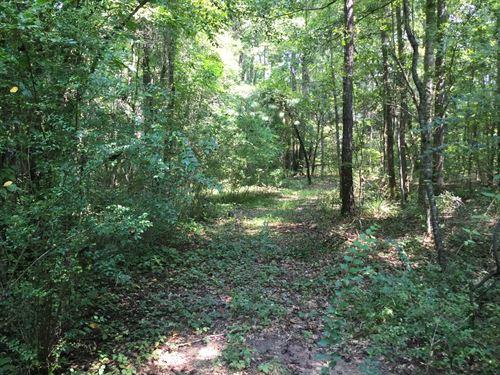 43-033 Frazier Tract : Opelika : Lee County : Alabama