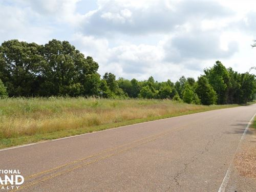 Austin Road Wooded And Pasture Land : Nesbit : Desoto County : Mississippi