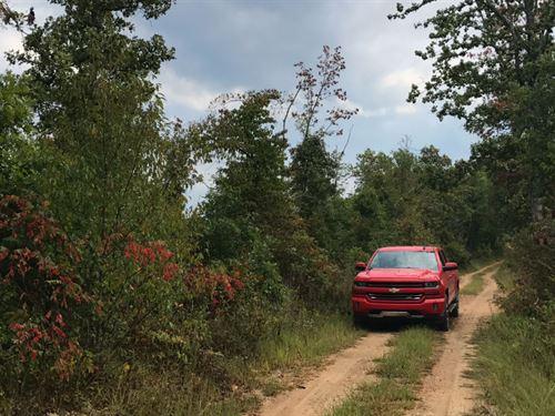 9 Acres Close To Conservation Land : Eminence : Douglas County : Missouri